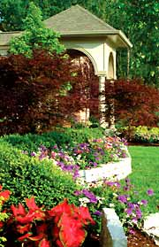 Healthy lawns and landscape improve property values