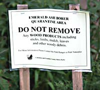Emerald Ash Borer Ban Sign